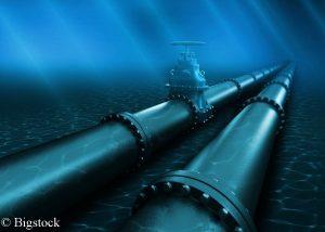 Umweltschützer befürchten große Probleme für die Umwelt, die druch den Bau der neuen Pipeline entstehen können.