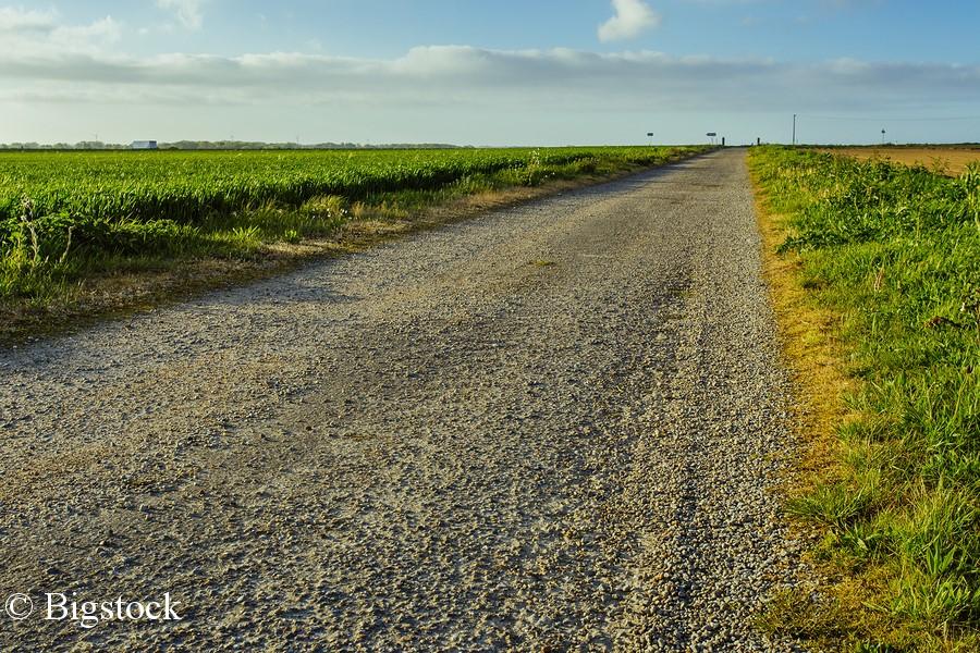 Agrarkonsens, nachhaltige Landwirtschaft