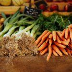 Kostenfreies E-Book über vertikale Gärten, biologisches Gärtnern und weitere Gartentrends
