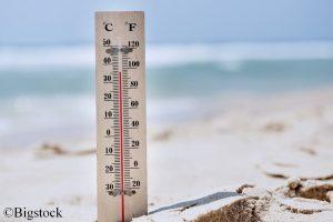 Nicht nur bei uns auf dem Land, auch in den Meeren gibt es immer mehr Hitzewellen