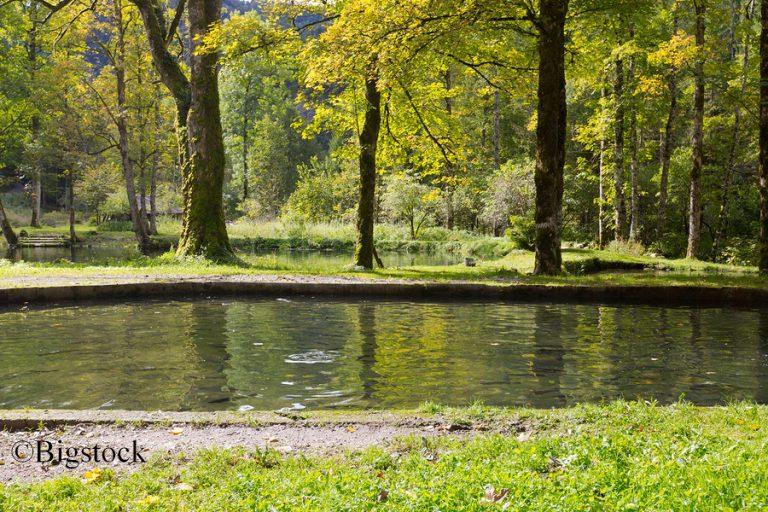 Deutsche Gewässer sind in desolatem ökologischen Zustand.