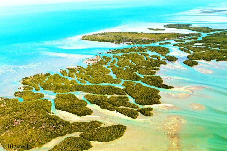 Schutz der Korallen, Hawaii, umweltschädliche Sonnencreme