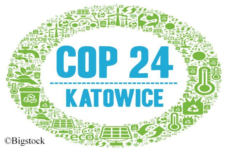 Für das Pariser Abkommen soll in Katowice ein Regelwerk entstehen. Doch langsam wird klar: das Klimaschutzabkommen offenbart Schwächen.