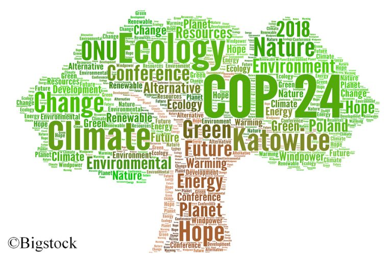 Mit dem Petersberger Klimadialog 2018 werden auch die Vorbereitungen für Kattowice vorangetrieben.