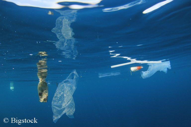 Einwegplastik verschmutzt unsere Meere - BeatPlasticPollution