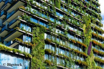 Projekt Nachhaltigkeit 2018