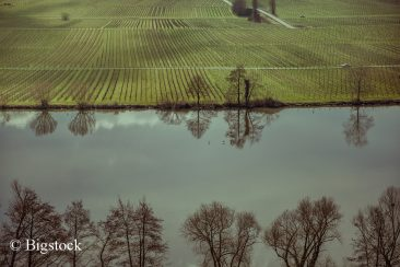 EU-Gewässerreport bestätigt kritischen ökologischen Zustand deutscher Gewässer.