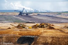 RWE will den Hambacher Forst abholzen, um den Braukohletagebau auszubauen