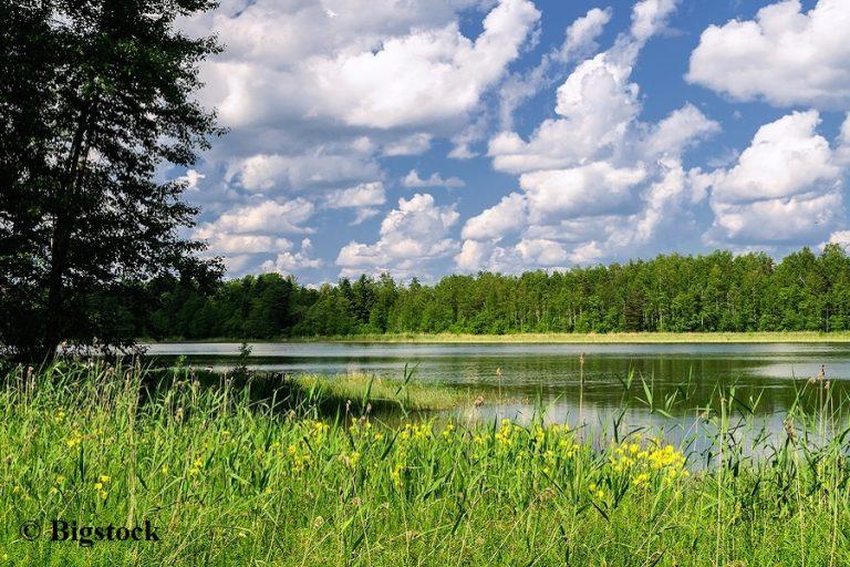 Sauerstoffgehalt in Gewässern